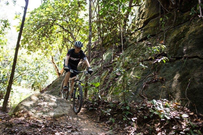 Rocky Arc, Chestnut Nature Park South. Photo by Dean KOH
