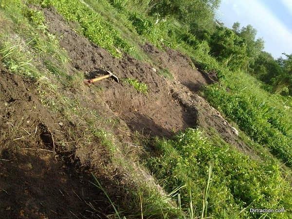 sunken pits of morbid nature, we buried a black cobra